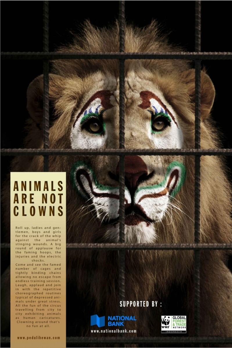 2261-4sco6c1n-animals-are-not-clowns